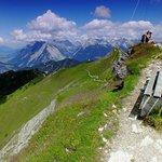 vista from Seefelderspitze
