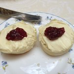 Freshly Baked Clotted Cream Scones