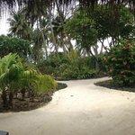 vista dal portico del bungalow deluxe