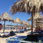 Chrissi Island Trip