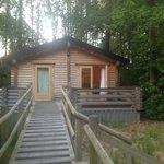 Woodpecker log cabin