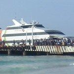 Un viaje a Cozumel