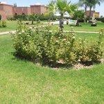 Beautiful gardens and scenery..