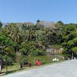 La végétation qui orne ce parc est tout simplement resplendissante.