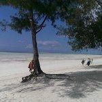 Het mooie witte strand