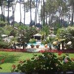 Le jardin et la piscine vue depuis la chambre