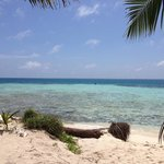 The view from Silk Caye