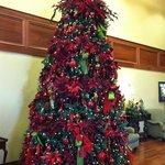 Tree in lobby