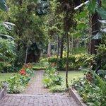 Garden at the Taj