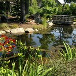 beauty in Maine Botanical Gardens