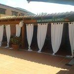 Bar Paninoteca da Lino