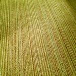 Old Carpet
