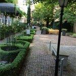 The nice garden