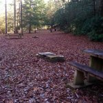 Old Fort Picnic Area
