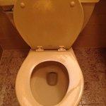 Worn paint  on the toilet!