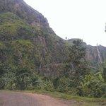 Wanale