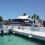 Big Blue Unlimited - Leeward Marina