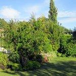giardino e patio