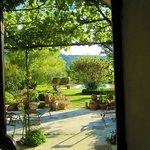 vista del parco dal patio