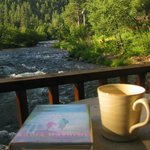 River Bend Cabin morning view