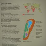 Succulent garden map