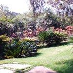 jardins encantadores