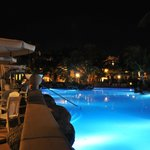 palm oasis piscina