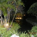 Jardim externo a noite
