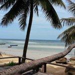 Bar / Beach