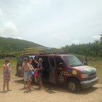 Coconut Reef Ride