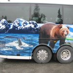 Tour bus stopping