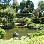 Japanese Garden (I think)