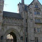Yale 4