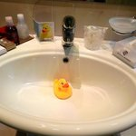 Complimentary ducky to make you laugh!