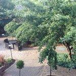 The gardens, Sat Bains
