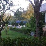jardin vers la piscine