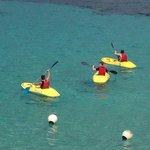 Free Kayaking
