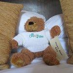 Crown teddy bear £8.50.