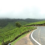 On the Way to Munnar