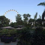 View of singapore flyer from hotel grounds
