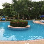 View of the adult pool area. Very nice and well maintained.