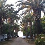 Calle con acceso a la playa