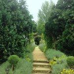 the path to the Marquee (edding venue) is very pretty