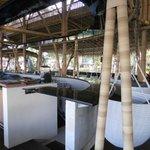 interno del Bamboo (di mattina, quindi chiuso!)