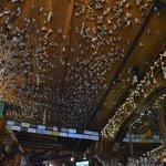 plafond du saloon