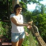 Pousada Lagamar / Hospedes alimentando nossos amiguinhos sawis.
