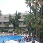 piscine centre