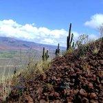 Ascendiendo al volcan gemelos