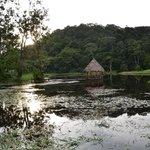 Natursee zu paddeln