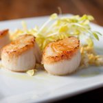 Scallops by James Carpenter